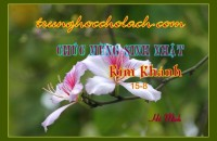 0 SN Kim khanh