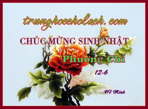 t6-phuong-chi