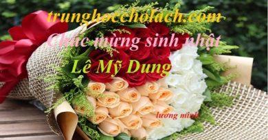 Mừng sinh nhật Lê Mỹ Dung